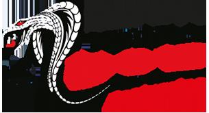 Taxi Kobra Logo